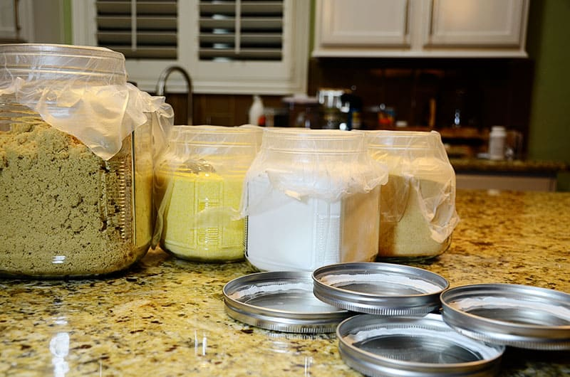 sugra 24 hour wait for airtight lids